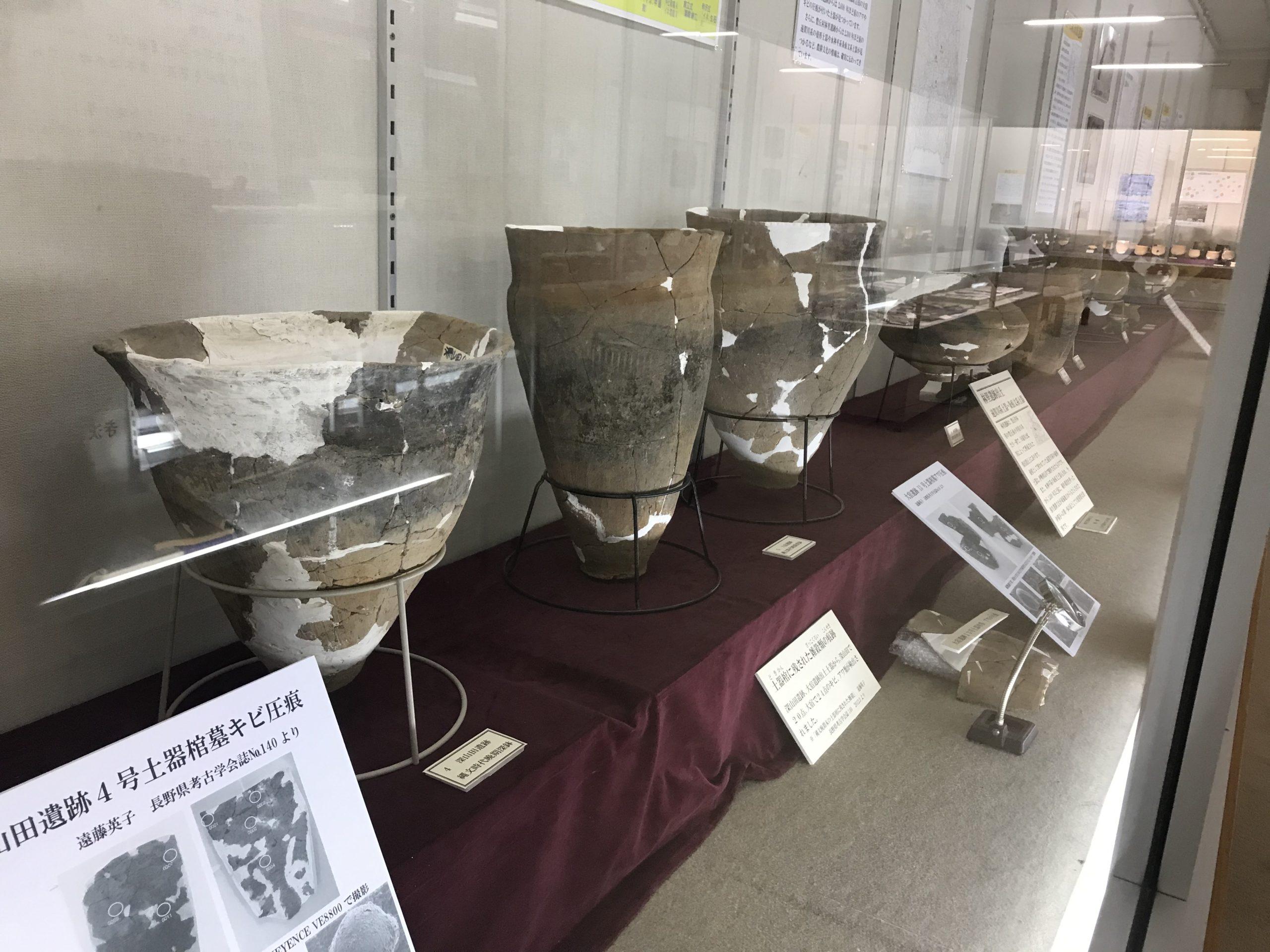 高森町歴史民俗資料館 特別展 高森の弥生展